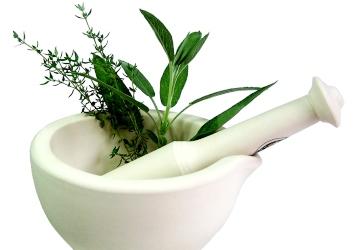 טיפול ביבלות ויראליות באמצעות צמחי מרפא