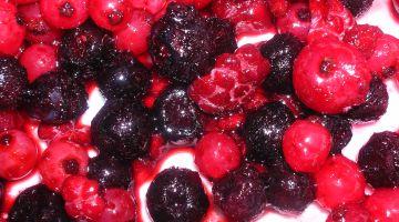 טיפול תזונתי למניעת מחלות
